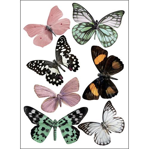 Sticker mural décoration en 3D représentant des papillons réalistes