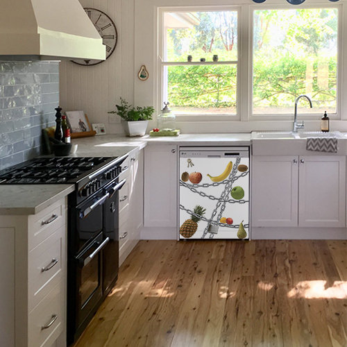Sticker autocollant Régime posé sur un lave-vaisselle en dessous d'un évier de cuisine