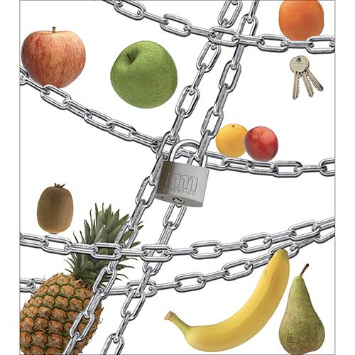 Sticker électroménager pour placards de cuisine Regime