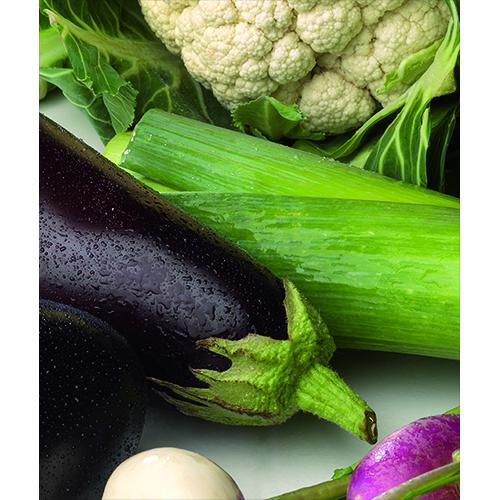 Sticker adhésif légumes verts pour déco de lave vaisselle