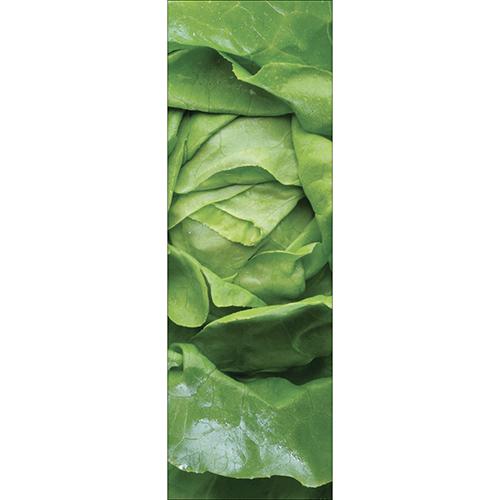 Sticker autocollant salade verte pour déco de frigo