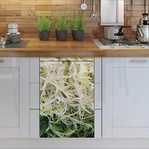 Sticker salade pour petit frigo collé sur un lave vaisselle