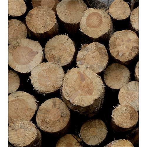 Sticker déco pour meubles de cuisines buches de bois