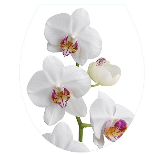 Sticker déco adhésif Orchidée pour WC