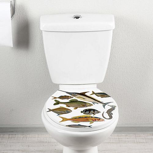 Sticker autocollant ornée de poissons divers collé sur des WC