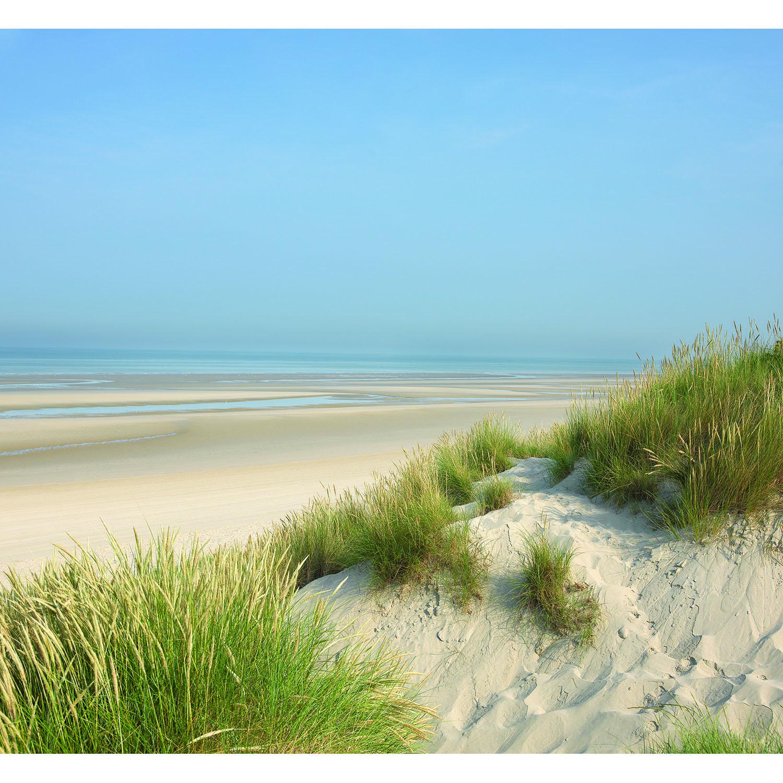 Pano dune et vue sur mer spécial salon
