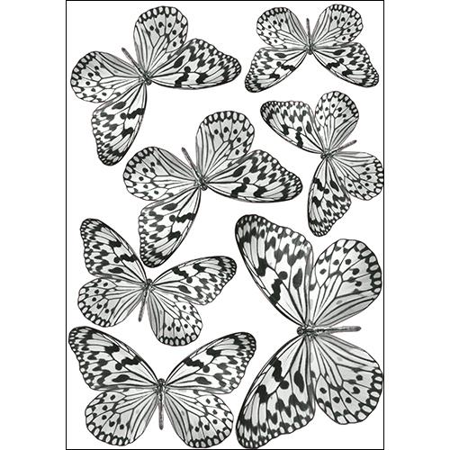 Sticker adhésif représentant des papillons noirs et blancs décoration en 3D