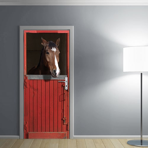 Apprenez à éclairer vos pièces sombres en collant notre adhésif pour porte avec un cheval marron dans sont box ocre