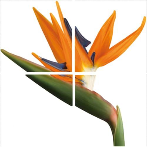 Sticker Fleur exotique à coller sur carrelage