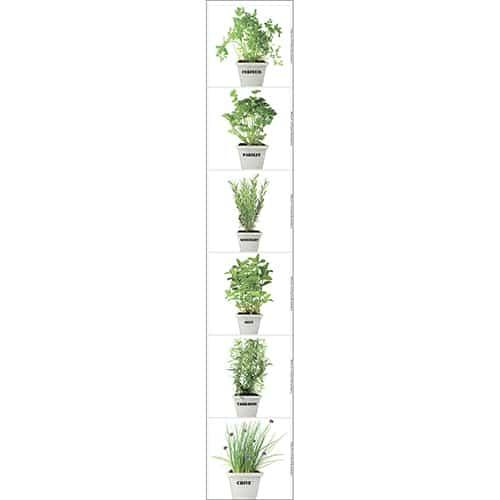 Adhésif carrelage Fines herbes aromatiques à coller au mur