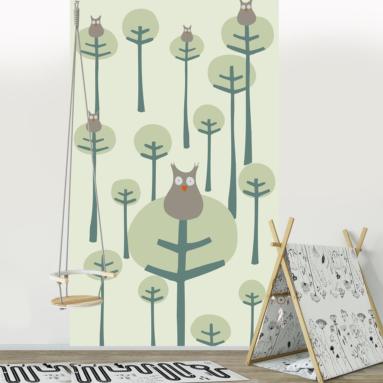 Visuel panoramique, papier intissé, 2.50 m x 1.50 m, customisation murale, design épuré, coucou le hibou, décor intemporel, vert tendre et gris, application facile, idéal chambre bébé.
